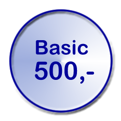 Video Basic um 500 Euro
